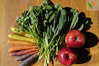 Dégradé de fruits et légumes