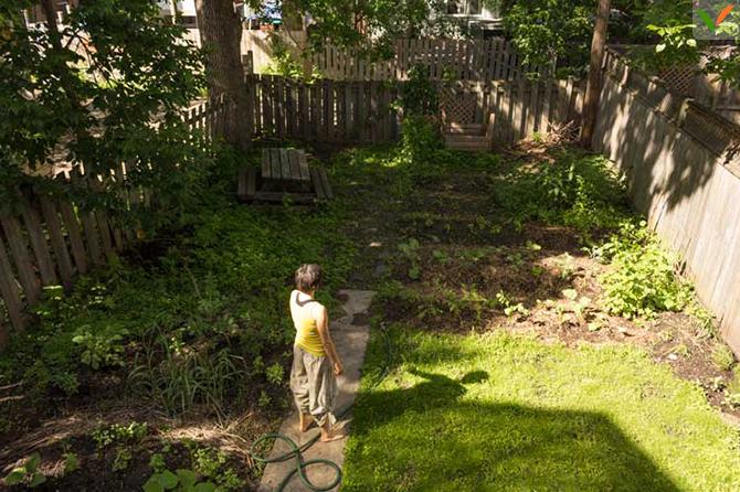 Isis dans le jardin